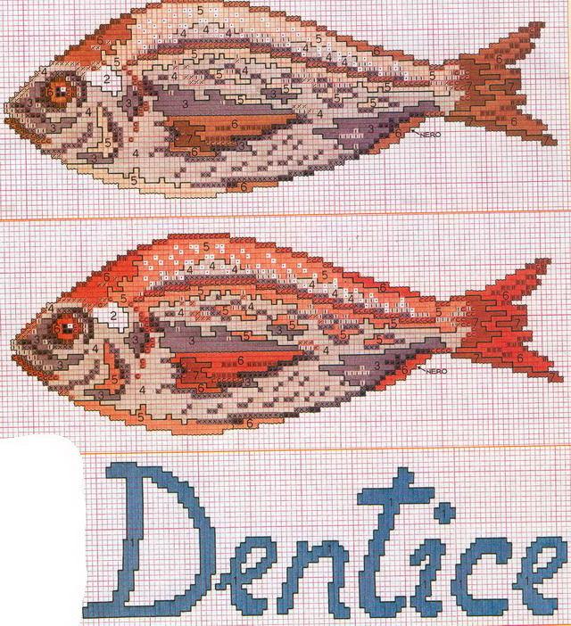 schemi_misti/animali_acqua/pesce_dentice.jpg
