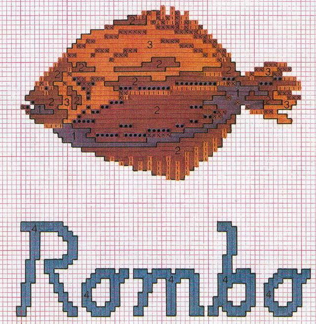 schemi_misti/animali_acqua/pesce_rombo.jpg