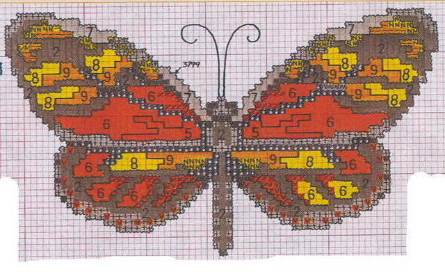 schemi_misti/animali_aria/schemi_animali_farfalle_11.jpg