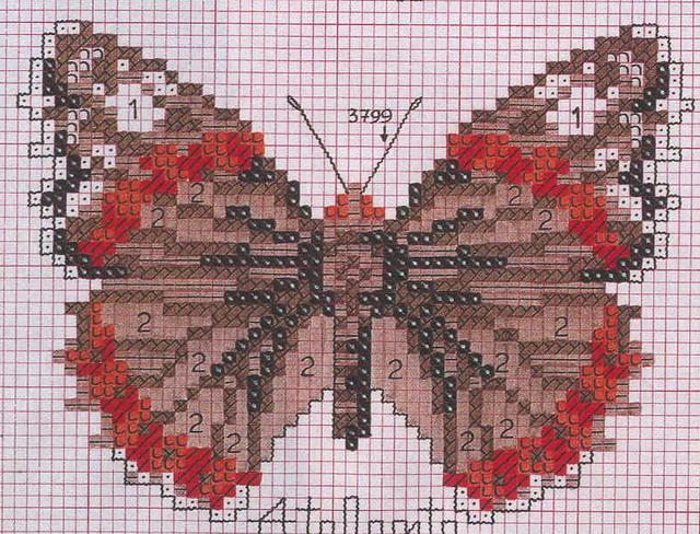 schemi_misti/animali_aria/schemi_animali_farfalle_16.jpg