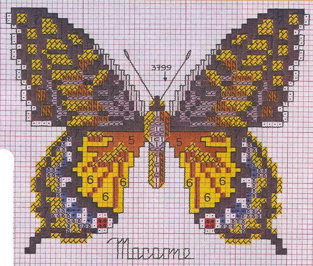 schemi_misti/animali_aria/schemi_animali_farfalle_17.jpg