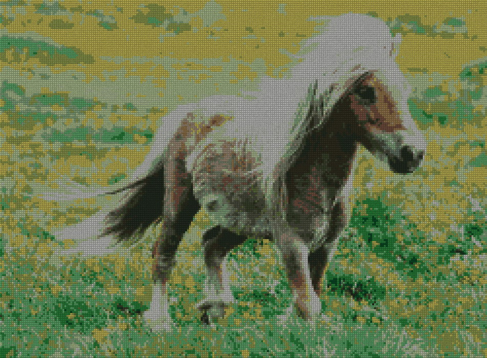 schemi_misti/animali_terra/pony250.jpg