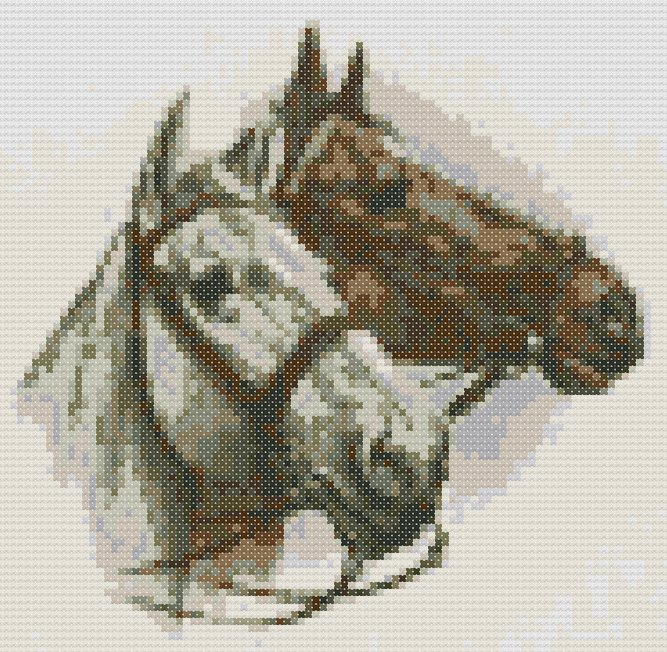 schemi_misti/animali_terra/schemi_animali_028.jpg