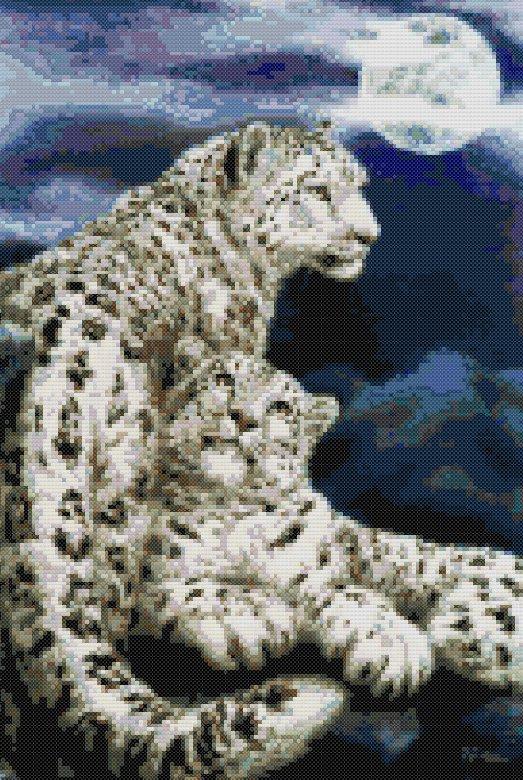 schemi_misti/animali_terra/schemi_animali_046.jpg