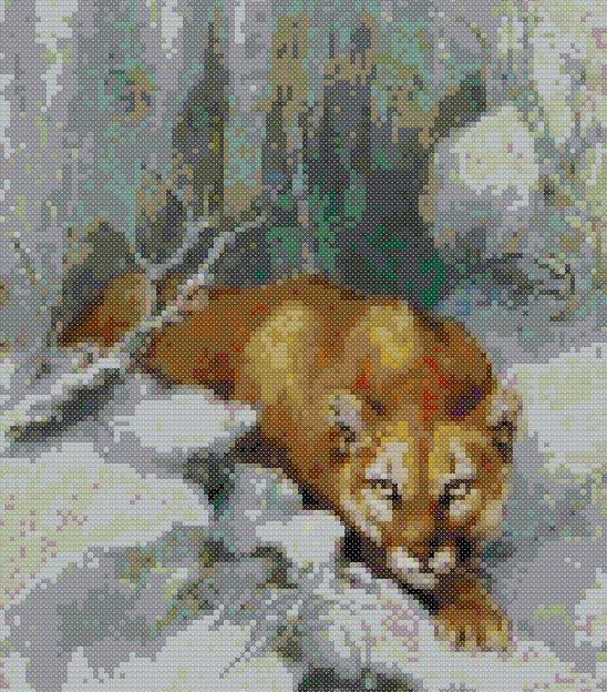 schemi_misti/animali_terra/schemi_animali_056.jpg