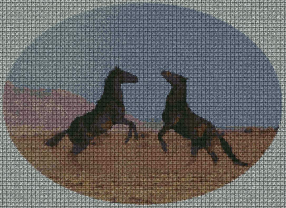schemi_misti/animali_terra/schemi_animali_128.JPG