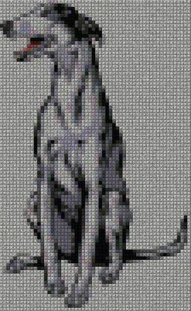 schemi_misti/animali_terra/schemi_animali_289.JPG
