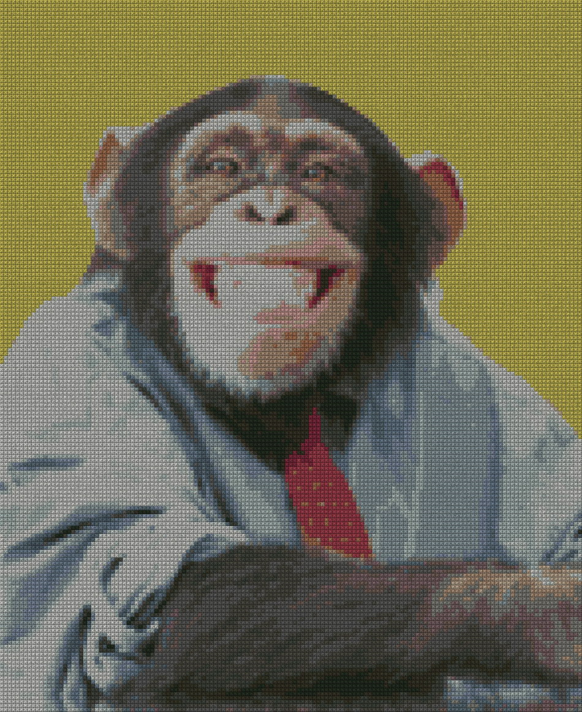 schemi_misti/animali_terra/scimmia180.jpg