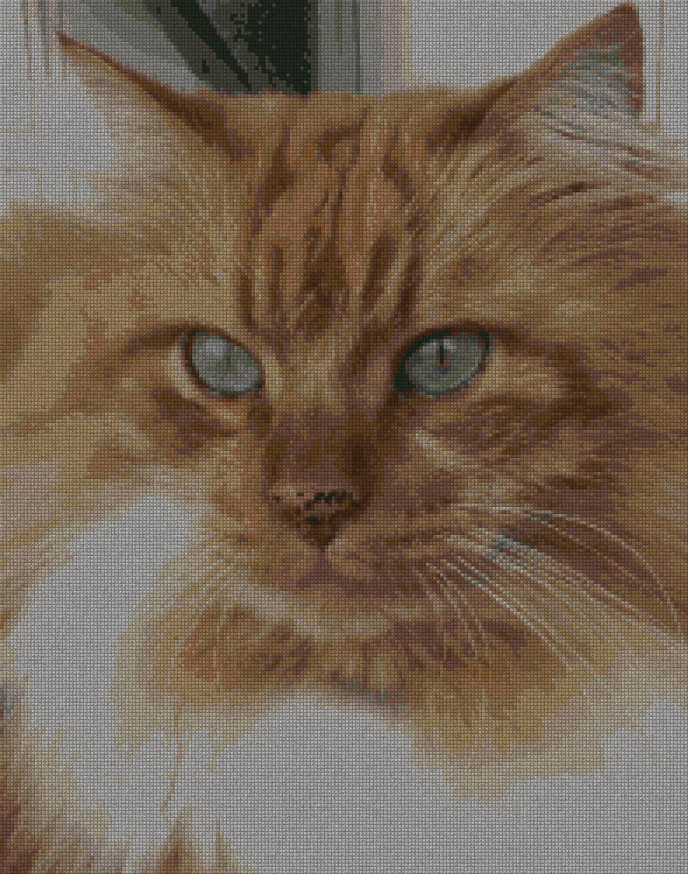 schemi_misti/animali_terra2/gatto_testa-197x250.jpg