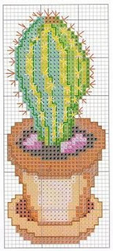 schemi_misti/fiori/cactus-4.jpg
