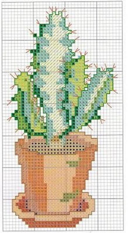 schemi_misti/fiori/cactus-5.jpg
