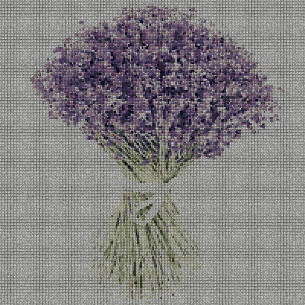 schemi_misti/fiori/lavanda_02s.jpg