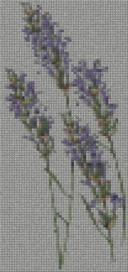 schemi_misti/fiori/lavanda_52x110.jpg