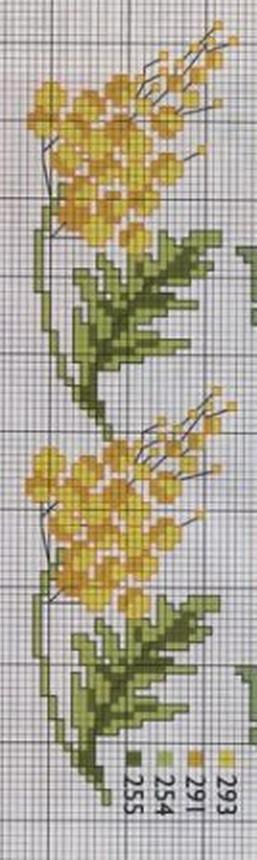 schemi_misti/fiori/mimosa3.jpg