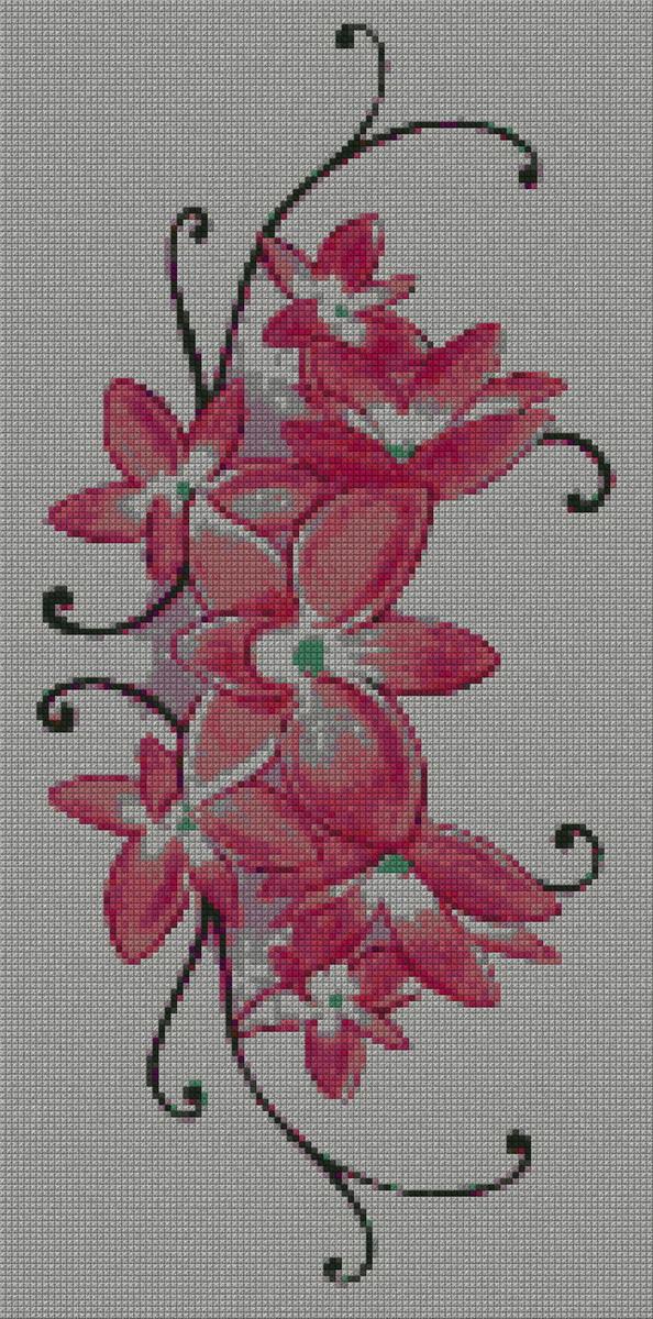 schemi_misti/fiori/orchidea01s.jpg