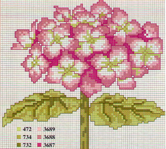 schemi_misti/fiori/ortensia3.jpg