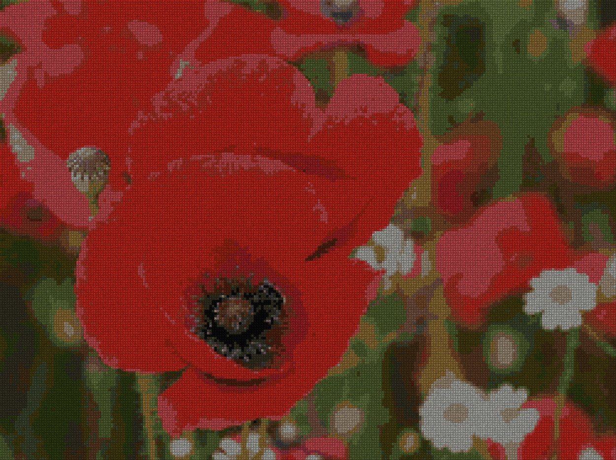 schemi_misti/fiori/papavero_papaveri_2s.jpg
