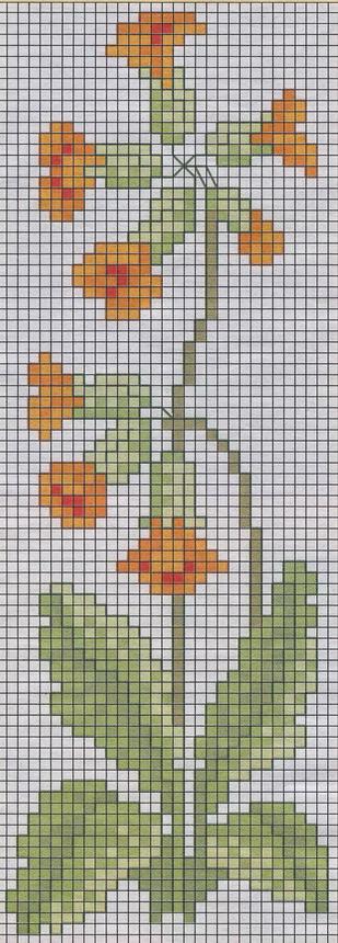 schemi_misti/fiori/schemi_fiori_042.jpg