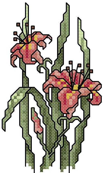 schemi_misti/fiori/schemi_fiori_frutta_013.jpg