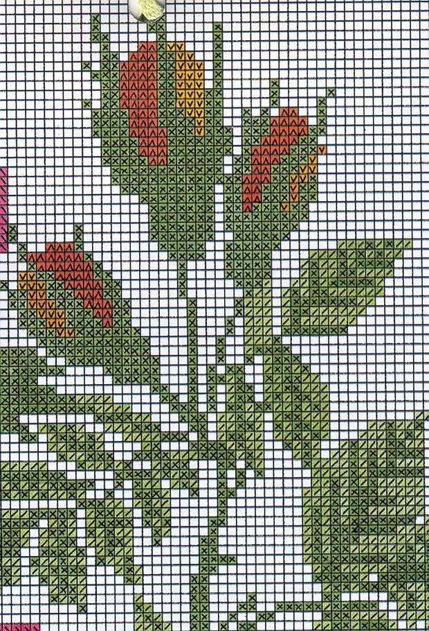 schemi_misti/fiori/schemi_fiori_frutta_052.jpg