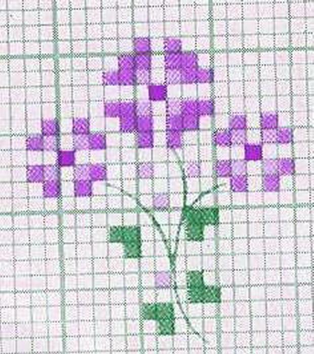 schemi_misti/fiori/schemi_fiori_frutta_061.jpg