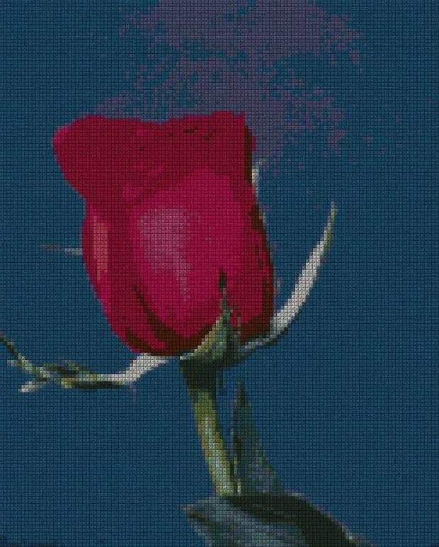 schemi_misti/fiori/schemi_fiori_frutta_085.JPG