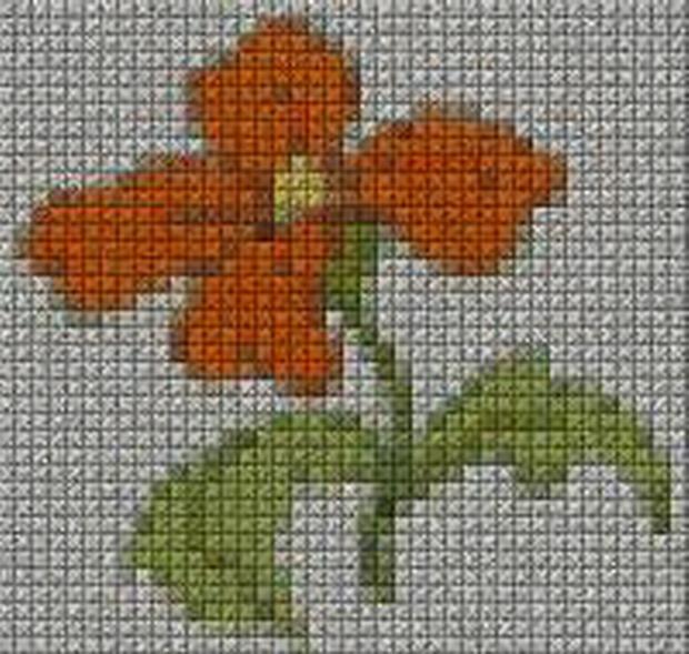 schemi_misti/fiori/schemi_fiori_frutta_092.JPG