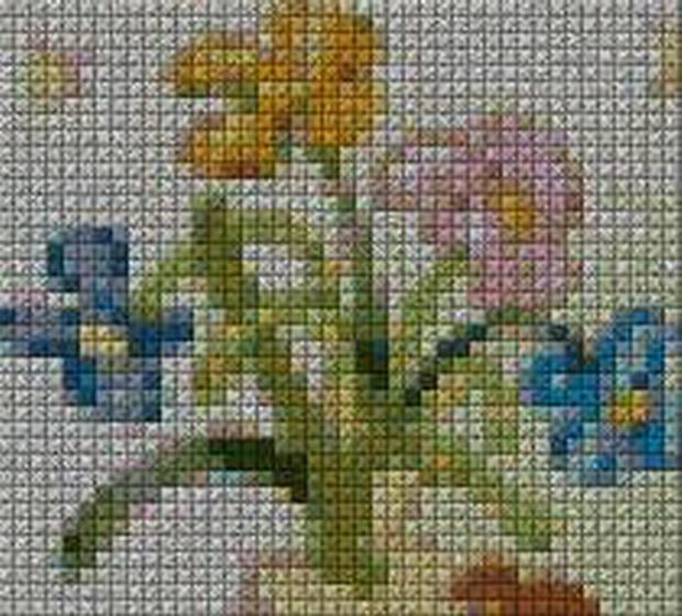 schemi_misti/fiori/schemi_fiori_frutta_094.JPG