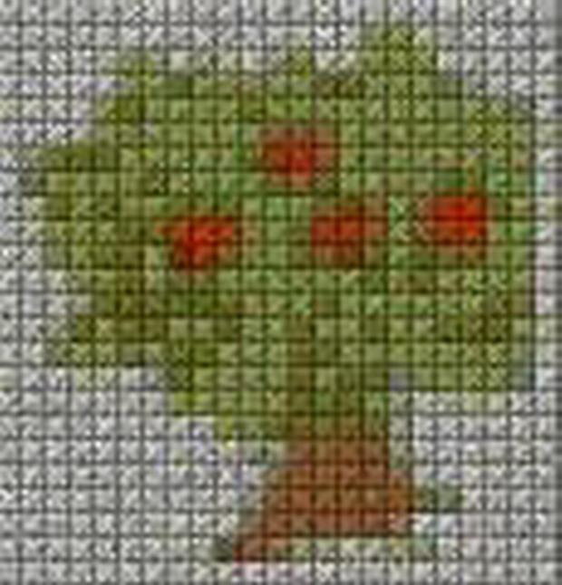 schemi_misti/fiori/schemi_fiori_frutta_121.JPG