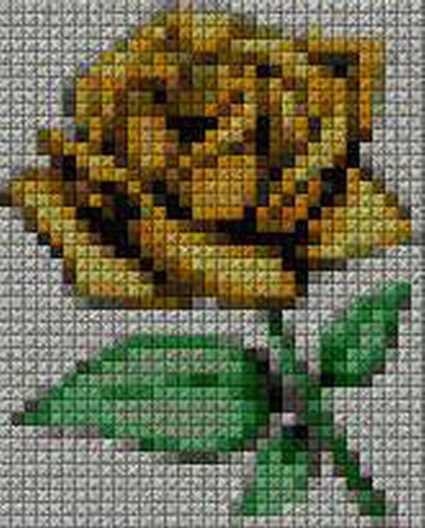 schemi_misti/fiori/schemi_fiori_frutta_128.JPG