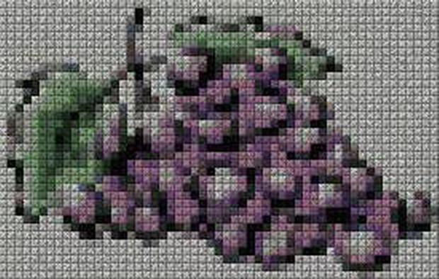 schemi_misti/fiori/schemi_fiori_frutta_140.JPG