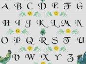 schemi_misti/alfabeti/schema_alfabeto_11.jpg
