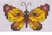schemi_misti/animali_aria/schemi_animali_farfalle_13.jpg