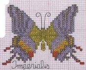 schemi_misti/animali_aria/schemi_animali_farfalle_14.jpg