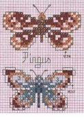 schemi_misti/animali_aria/schemi_animali_farfalle_20.jpg