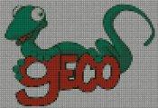 schemi_misti/animali_terra/geco100.jpg