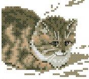 schemi_misti/animali_terra/schemi_animali_030.jpg