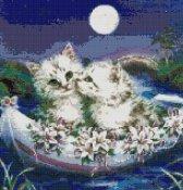schemi_misti/animali_terra/schemi_animali_037.jpg
