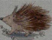 schemi_misti/animali_terra/schemi_animali_119.JPG