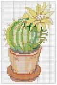 schemi_misti/fiori/cactus-7.jpg