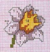 schemi_misti/fiori/schemi_fiori_060.jpg