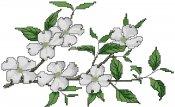 schemi_misti/fiori/schemi_fiori_frutta_002.jpg