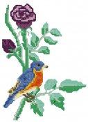 schemi_misti/fiori/schemi_fiori_frutta_012.jpg