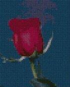 schemi_misti/fiori/schemi_fiori_frutta_086.JPG