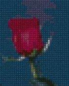 schemi_misti/fiori/schemi_fiori_frutta_087.JPG