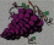 schemi_misti/fiori/schemi_fiori_frutta_108.JPG
