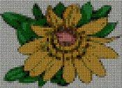 schemi_misti/fiori/schemi_fiori_frutta_117.JPG