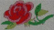 schemi_misti/fiori/schemi_fiori_frutta_131.JPG