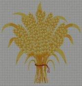 schemi_misti/frutta/grano-spighe.jpg