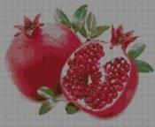 schemi_misti/frutta/melograni.jpg